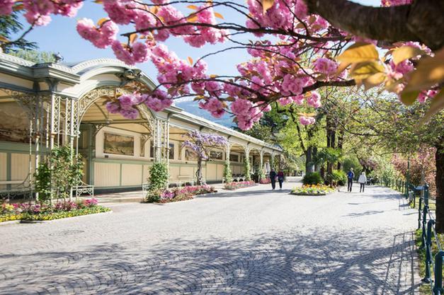 Merano Flower Festival, l\'eccellenza dei vivaisti - Merano - Alto Adige