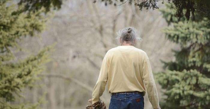 Dallo Studio Al Lavoro Cosi Ci Si Difende Dall Alzheimer Salute E Benessere Alto Adige