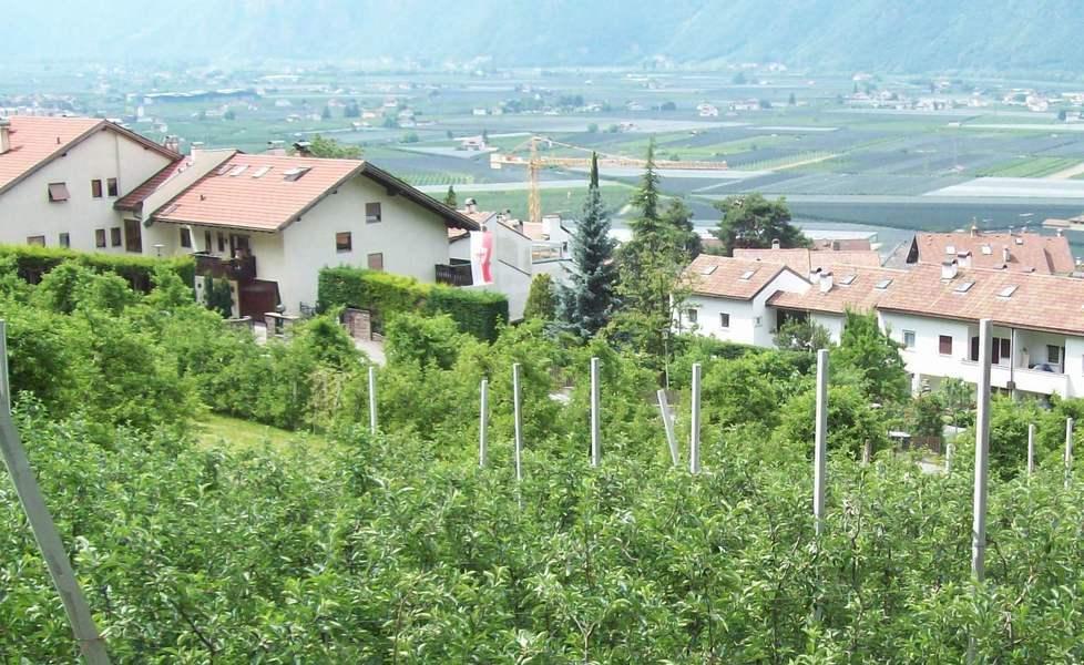 Dei Mille Alloggi Per Il Ceto Medio Previsti In Alto Adige, 54 Verranno  Realizzati A Laives. 27 Sono Già In Costruzione Nella Zona Toggenburg I, ...